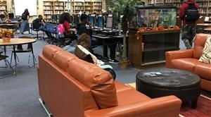 Chairs in LIbrary