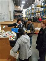 Students work together sorting food and packing boxes for distribution.